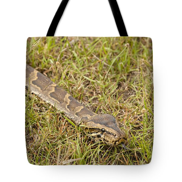 Python In Grass, Kenya Tote Bag