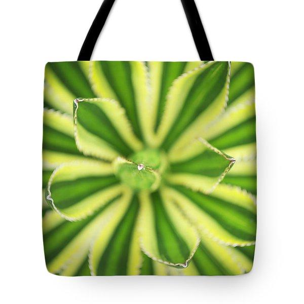 Quadricolor Agave Plant Tote Bag
