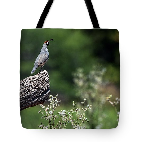 Quail Watching Tote Bag