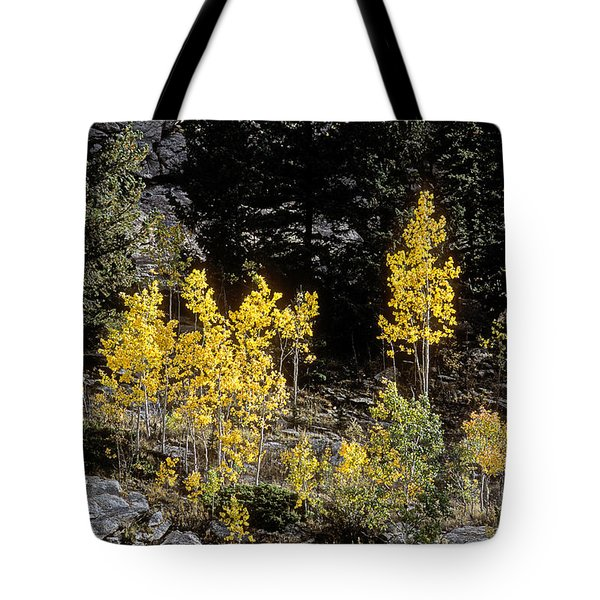 Aspens In Fall At Eleven Mile Canyon, Colorado Tote Bag by John Brink