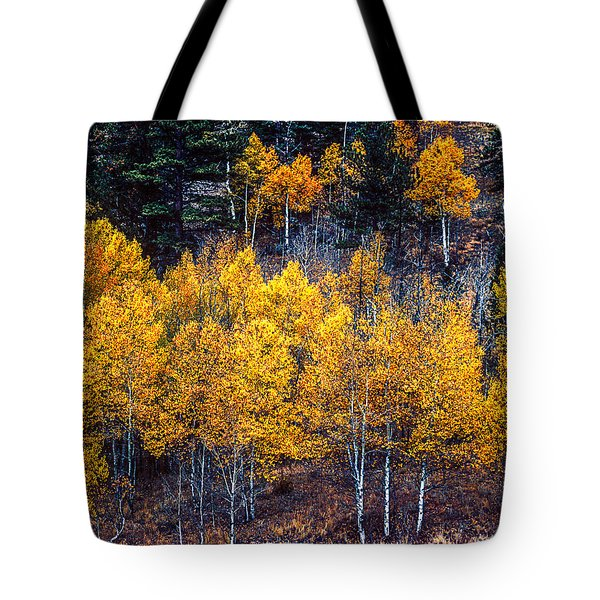 Aspen In Fall Colors In Eleven Mile Canyon Colorado Tote Bag by John Brink