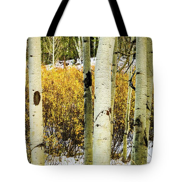 Quakies And Willows In Autumn Tote Bag