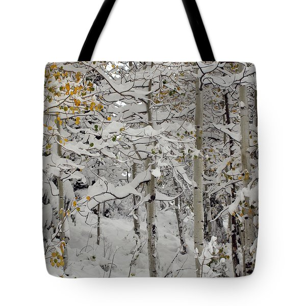 Quakies In Early Winter Tote Bag