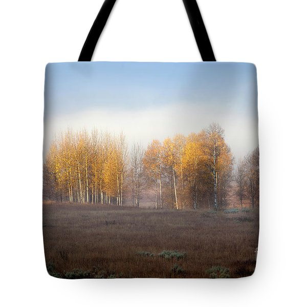 Quaking Aspen Trees At Dawn, Grand Teton National Park, Wyoming Tote Bag