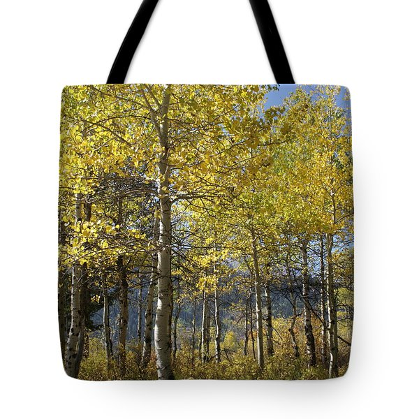 Tote Bag featuring the photograph Quaking Aspens by Cynthia Powell