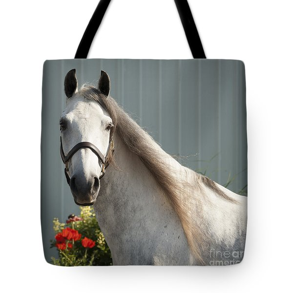 Tote Bag featuring the photograph Que Pasa? by Carol Lynn Coronios