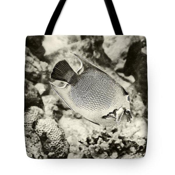 Queen Angel Fish 2 Tote Bag