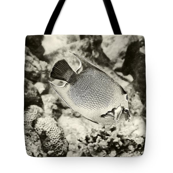 Queen Angel Fish 2 Tote Bag by Perla Copernik