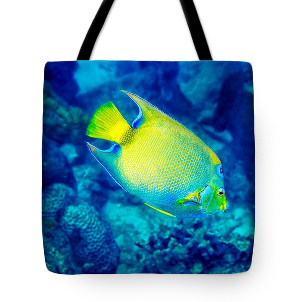 Queen Angelfish I Tote Bag