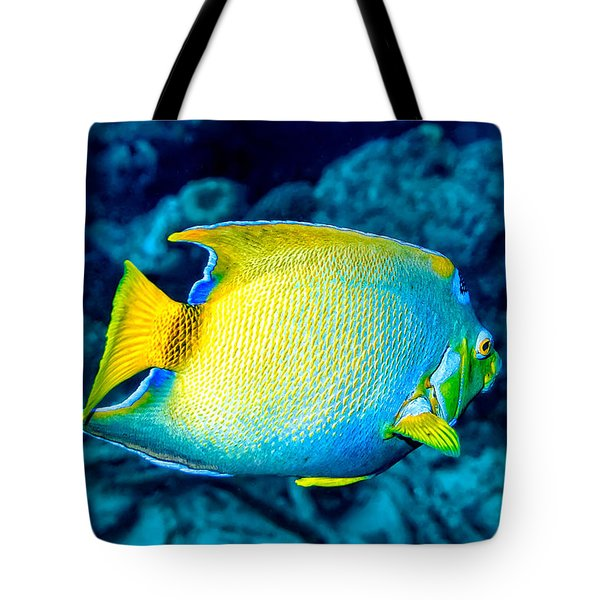 Tote Bag featuring the photograph Queen Angelfish II by Perla Copernik