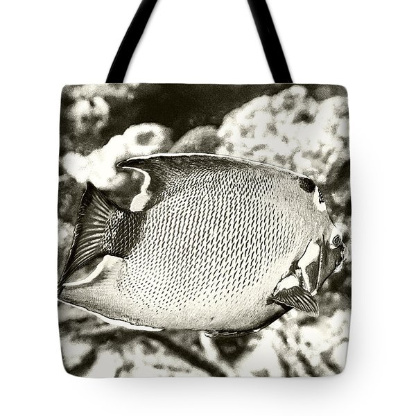 Queen Angelfish Tote Bag by Perla Copernik