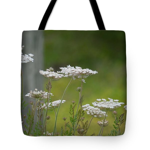 Queen Anne Lace Wildflowers Tote Bag