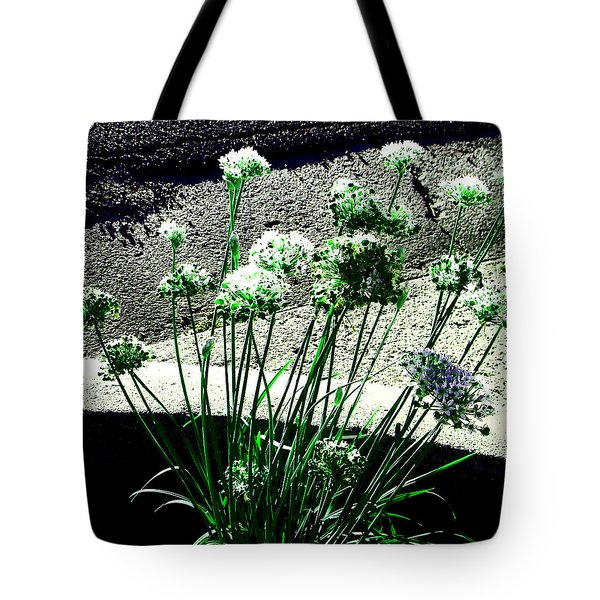 Tote Bag featuring the photograph Queen Anne's Lace by Lenore Senior