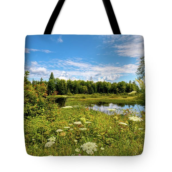 Tote Bag featuring the photograph Queen Anne's Lace On The Moose River by David Patterson