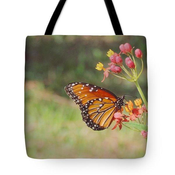 Queen Butterfly On Milkweed Tote Bag
