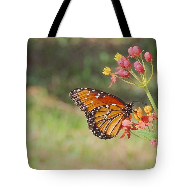 Queen Butterfly On Milkweed Tote Bag