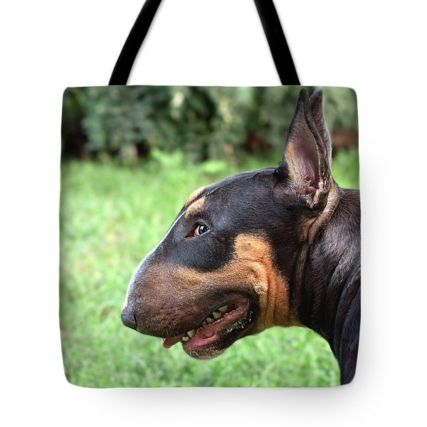Queen Of The Guile And Mischief Tote Bag