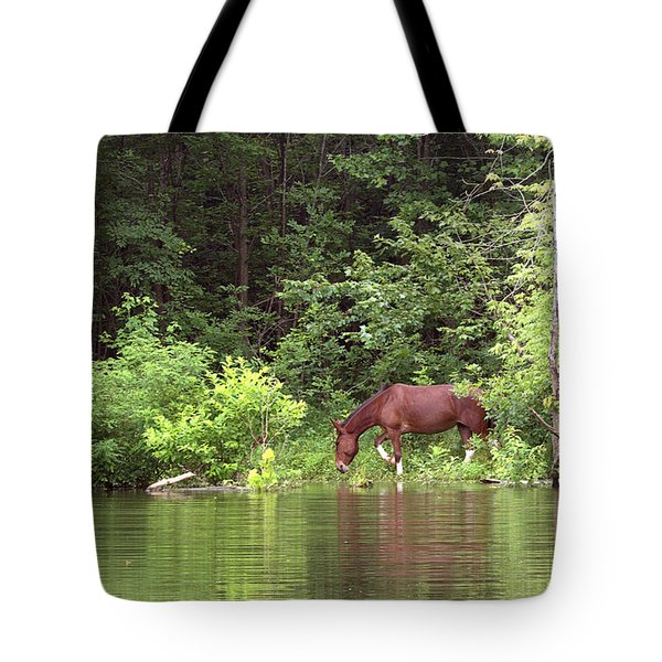 Quench Of Thirst Tote Bag