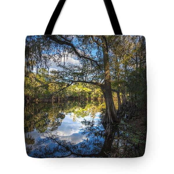 Quiet Embrace Tote Bag