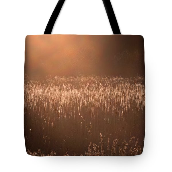 Quiet Evening Light Tote Bag
