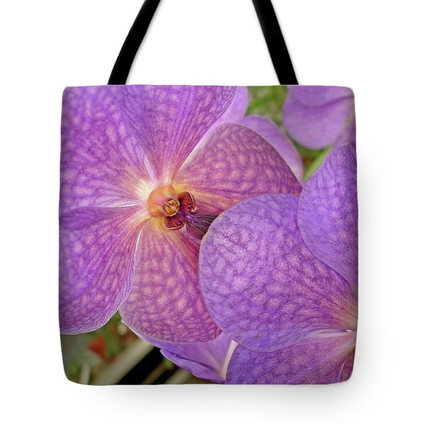 Tote Bag featuring the photograph Quiet Grace 2 by Lynda Lehmann