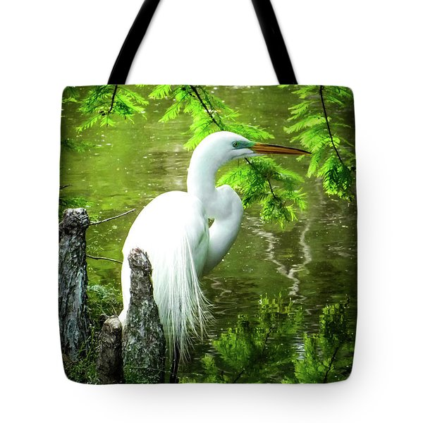 Quiet Moments Of Elegance Tote Bag by Karen Wiles