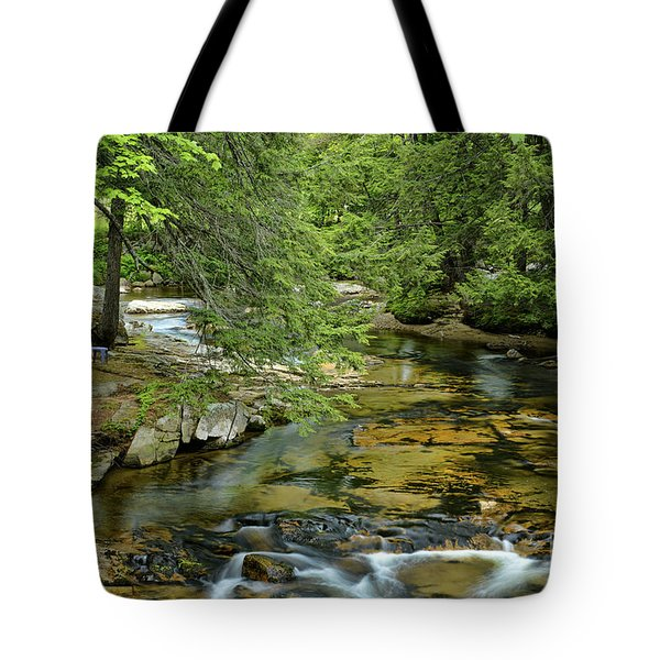 Quiet Place Tote Bag by Alana Ranney