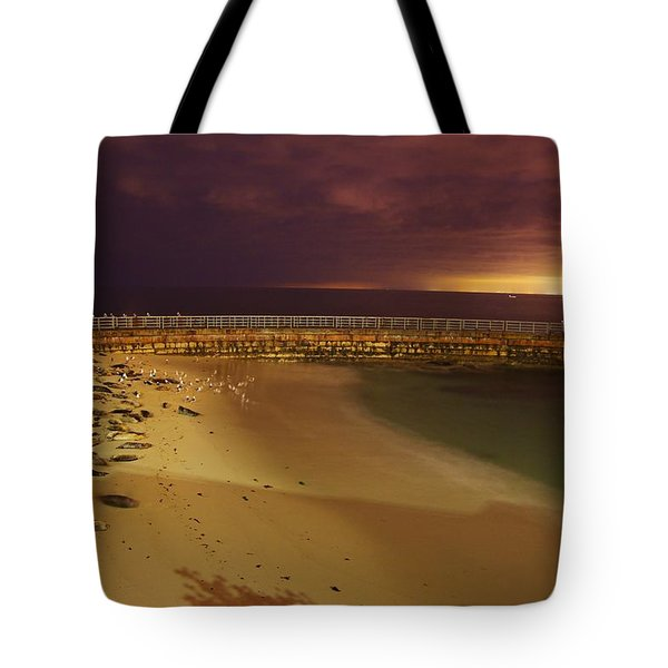 Quiet Time At Children's Pool Tote Bag by Matt Helm