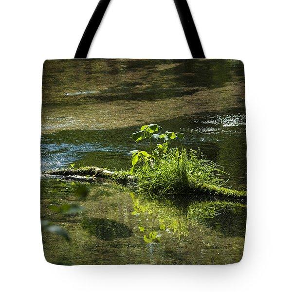 Quiet Trout Stream Tote Bag