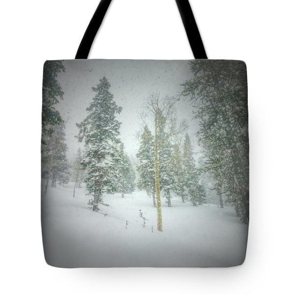 Quiet Turns  Tote Bag by Mark Ross