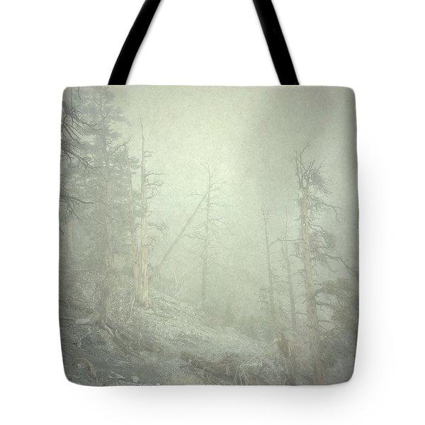 Quiet Type Tote Bag