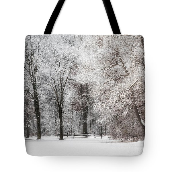 Quiet Winter  Tote Bag