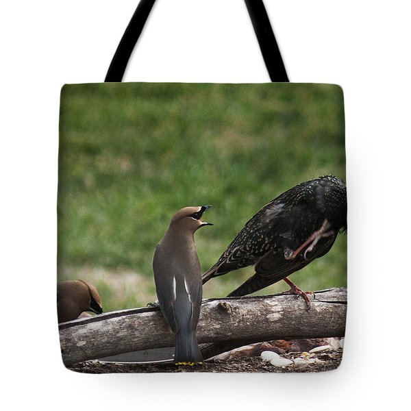 Quit Scratching Tote Bag by Karen Slagle