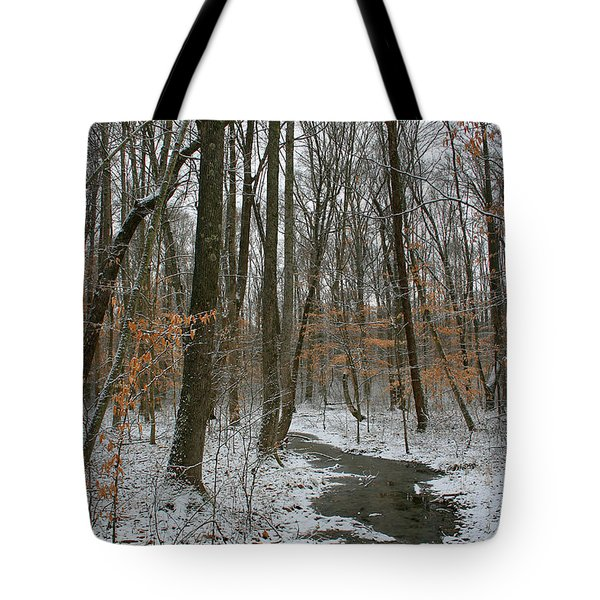 Quite Path Tote Bag by Andrei Shliakhau