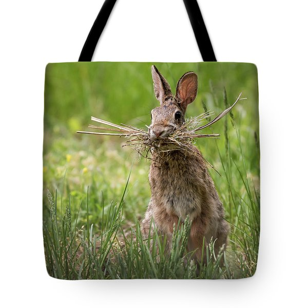 Rabbit Collector Square Tote Bag by Terry DeLuco