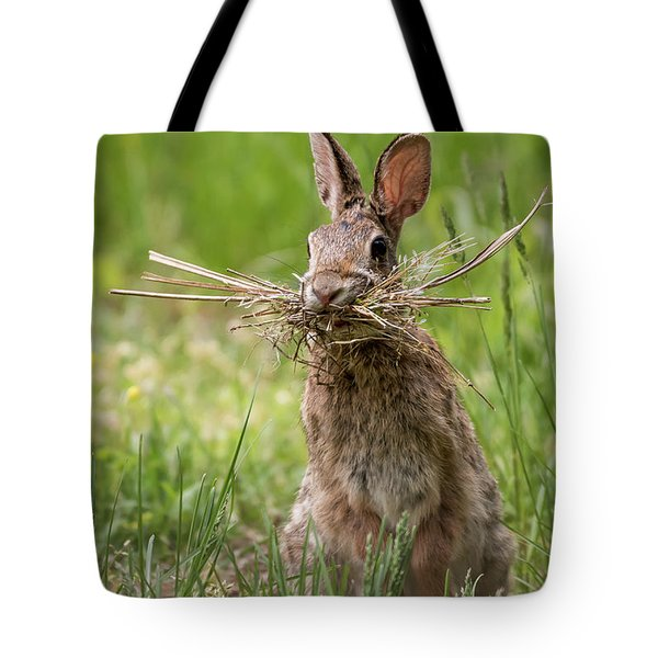 Rabbit Collector  Tote Bag by Terry DeLuco
