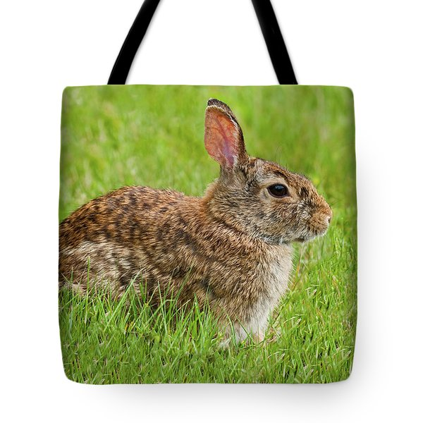 Rabbit In A Grassy Meadow Tote Bag