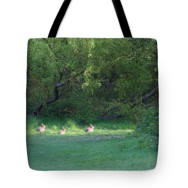 Rabbit Meadow Tote Bag