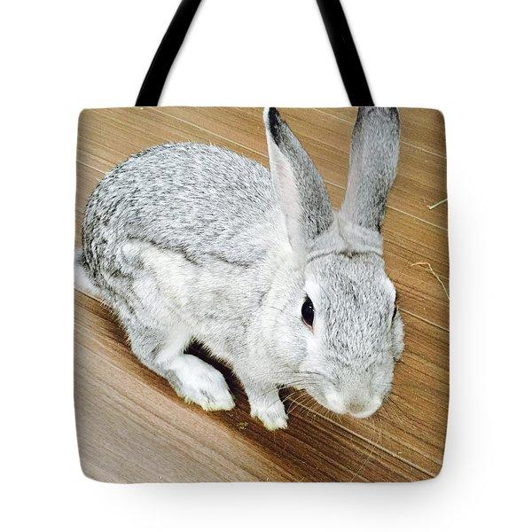 Rabbit Tote Bag by Nao Yos