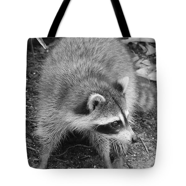 Raccoon - Black And White Tote Bag by Carol Groenen