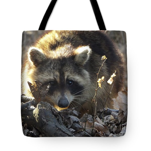 Raccoon Sunset Tote Bag