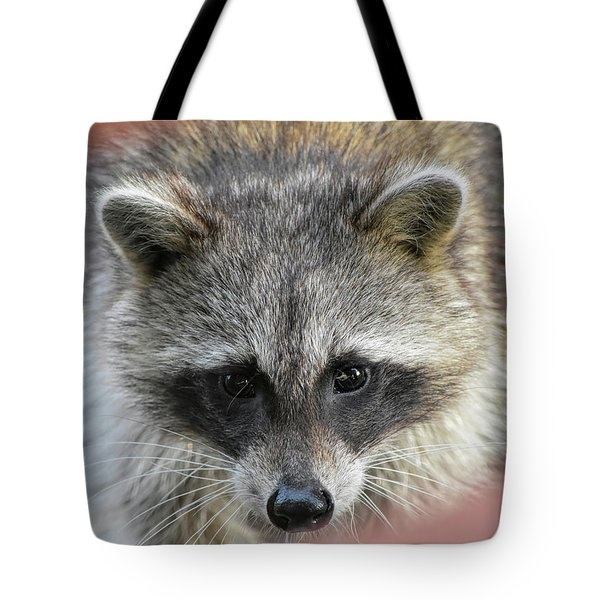 Raccoon's Gorgeous Face Tote Bag