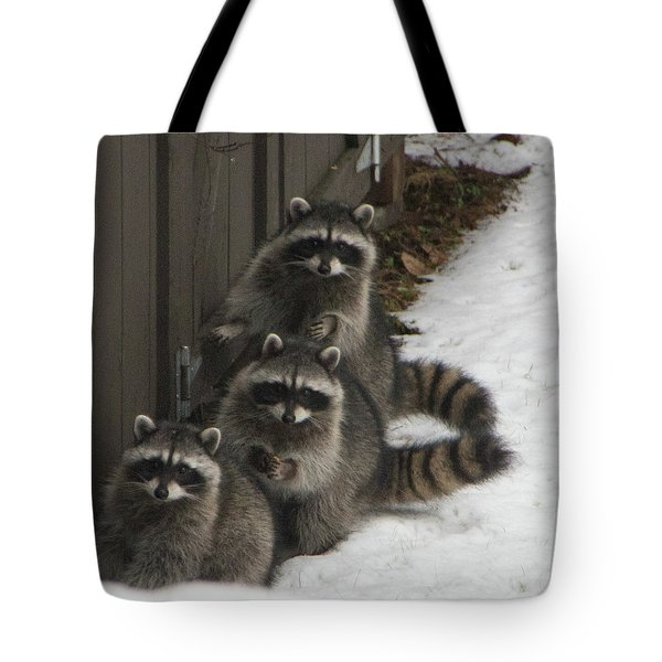 The Three Stooges - 2 Tote Bag