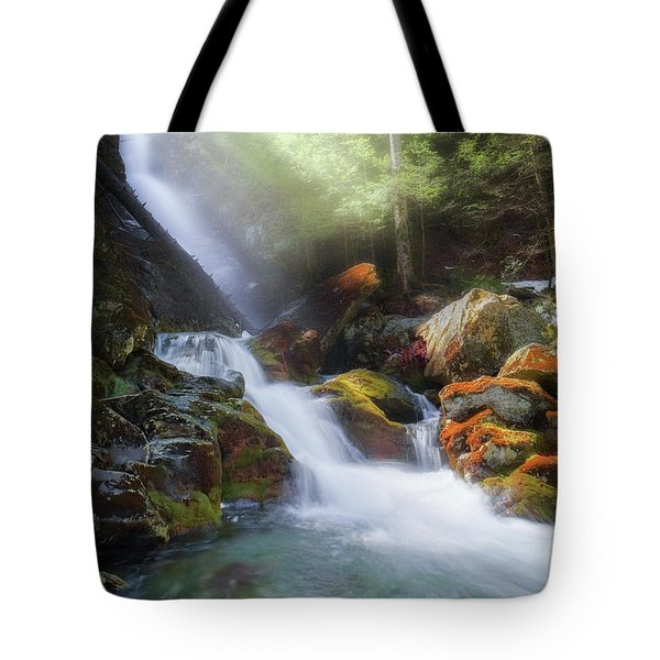 Tote Bag featuring the photograph Race Brook Falls 2017 by Bill Wakeley