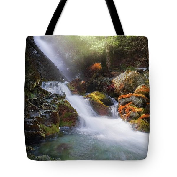 Tote Bag featuring the photograph Race Brook Falls 2017 Square by Bill Wakeley