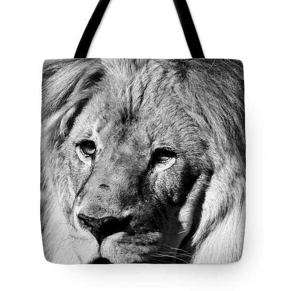 Tote Bag featuring the photograph Racine Zoo Lion by Ricky L Jones