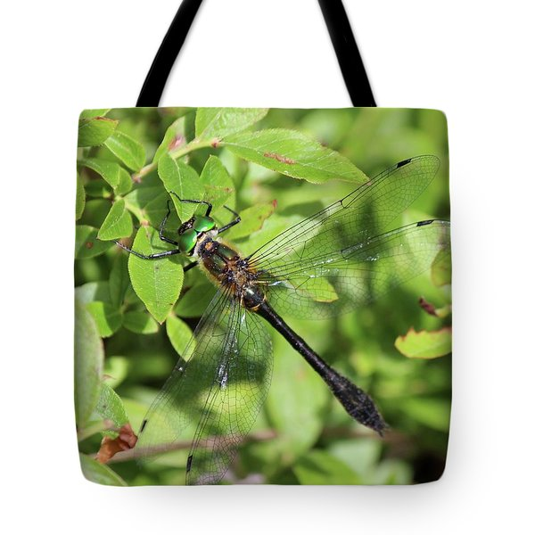 Racket-tailed Emerald  Tote Bag