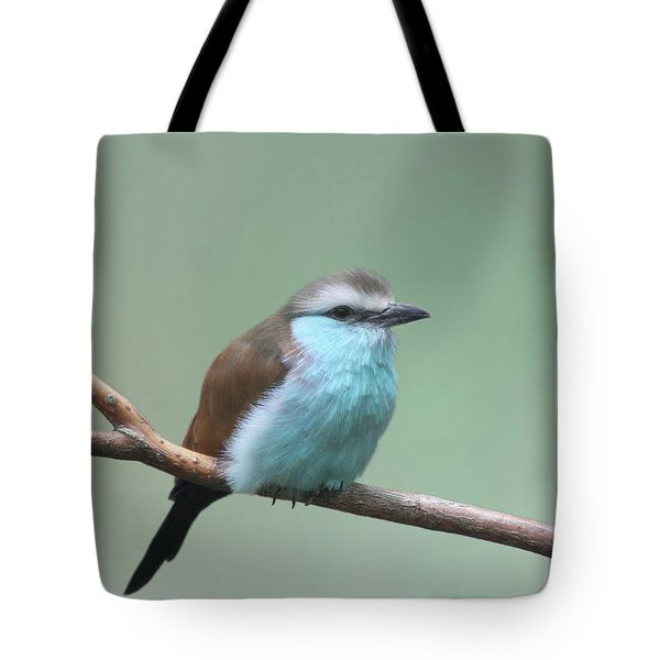 Racket-tailed Roller V2 Tote Bag