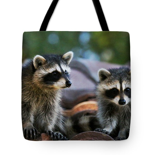 Racoons On The Roof Tote Bag