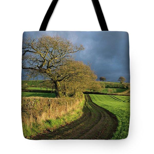Raddon Top In Mid Devon Tote Bag